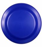 9 inch flyer Blue