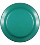 9 inch flyer Green