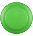 9 inch flyer neon Green